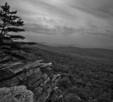 Annapolis Rock by joelleherman