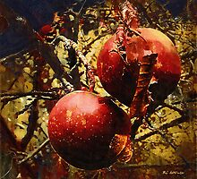 Forbidden Fruit by RC deWinter