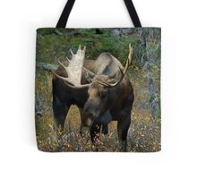 Bull moose in the woods Tote Bag