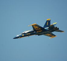 BLUE ANGEL #1 by Rick Bott