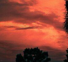 """Evening Shadows"" by Anthony Cherubino"