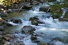 nooksack river rapids, washington, usa by dedmanshootn