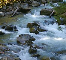 nooksack river rapids, washington, usa by dedmanshootn