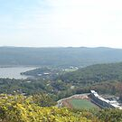 Panoramic View Overlooking West Point & The Hudson River by Christine Skulevold
