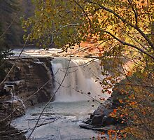 Golden Light on Letchworth Lower Falls by Jill Vadala