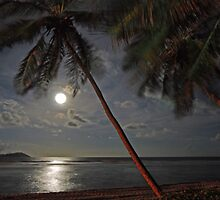 Moonrise over Reef Bay by Leon Heyns