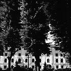 Rīgas pils | Rīga castle by Roberts Birze