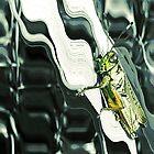 Hopper Art by sillyfrog