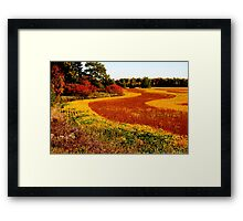 Mother Nature Brush Strokes..... Framed Print