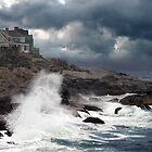 Going Coastal In Maine by Carolyn  Fletcher