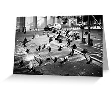 moment of takeoff Greeting Card