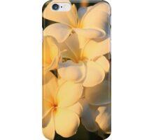 iPhone case 'warmth' iPhone Case/Skin