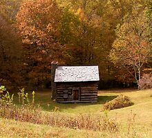 Rustic Cabin by Tom Michael Thomas