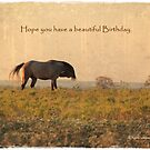Greeting Card - Birthday by Kristi Johnson