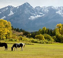 Grazing near Sneffels by Eivor Kuchta