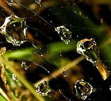 Patch Work Dew 02 by Otto Danby II