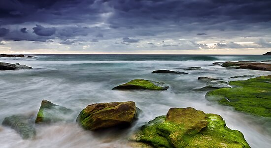 Sullen Dawn by Mark  Lucey