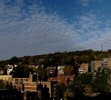 Mount royal fall panorama by AndreCosto