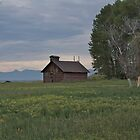 Montana Farm House by JasPeRPhoto