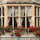 Cotswold Stone by hjaynefoster