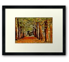Fractalius Autumn Walkway Framed Print