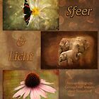 Sfeer en Licht - Kalender voorpagina by steppeland