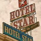 Green Parrot visits the Hotel Star by Lara Bakes-Denman