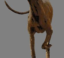 Whippet by Bob Price
