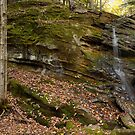 Trout Brook Falls - GigaPan by Stephen Beattie