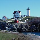 "The Cape Neddick ""Nubble"" Lighthouse by katherine rohnert"
