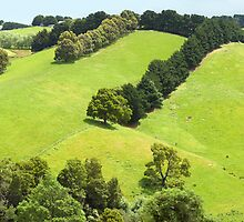 Rolling Green Hills, Gippsland, Australia by Michael Boniwell