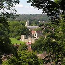 Winchester College, Wolvesey Palace & Wolvesey Castle for iPhone by Philip Mitchell