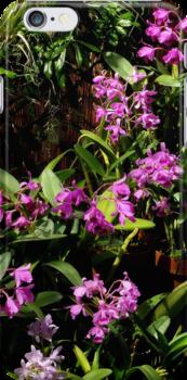 Botanical 2 iPhone Case by artisandelimage