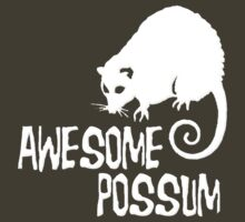 Awesome Possum by gleekgirl