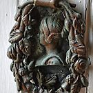 Elegant Door-knocker by lynn carter