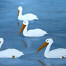 Beautiful Pelicans by MaeBelle