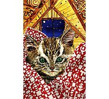 Kitten in a Quilt Photographic Print