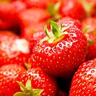 Simply Strawberries by Anne Gilbert