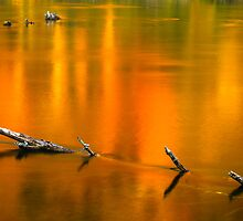 Autumn Reflections on the Holston River by Greg Booher