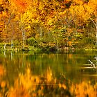 Reflections of Fall by Greg Booher