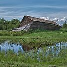 Collapsed Alberta Barn by JasPeRPhoto