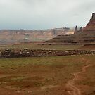 Canyonlands Country Roads by David  Hughes