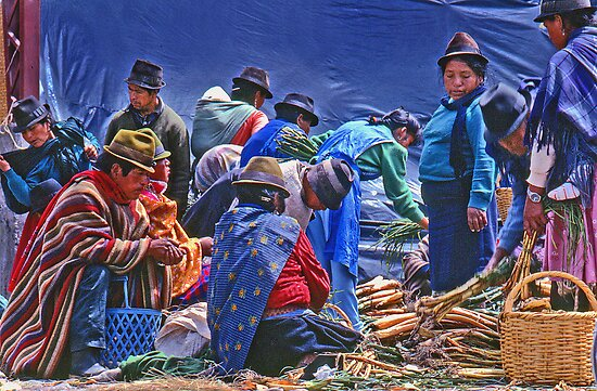 The market at Saquisili, Ecuador by cclaude