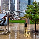 Millennium Park Rain by James Watkins