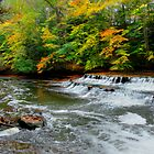 Autumn on the Chagrin River by Marcia Rubin