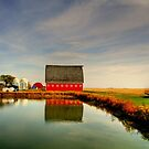 Barns of Manitoba by Larry Trupp