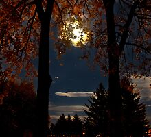 Full Moon Rising by Sandra Parlow