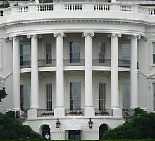 The White House - Washington DC by Cath Baker