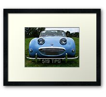 The Happy Frog. Framed Print