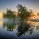 Misty Dawn 2.0 by Yhun Suarez